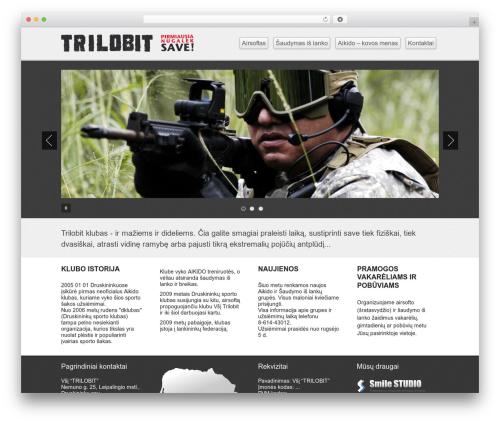 Business lite best free WordPress theme - trilobit.lt