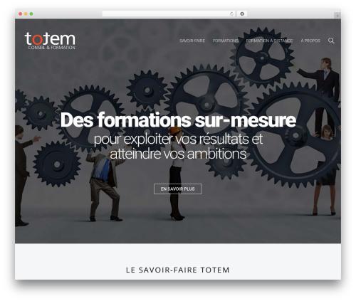Free WordPress Snazzy Maps plugin - totem-formation.fr