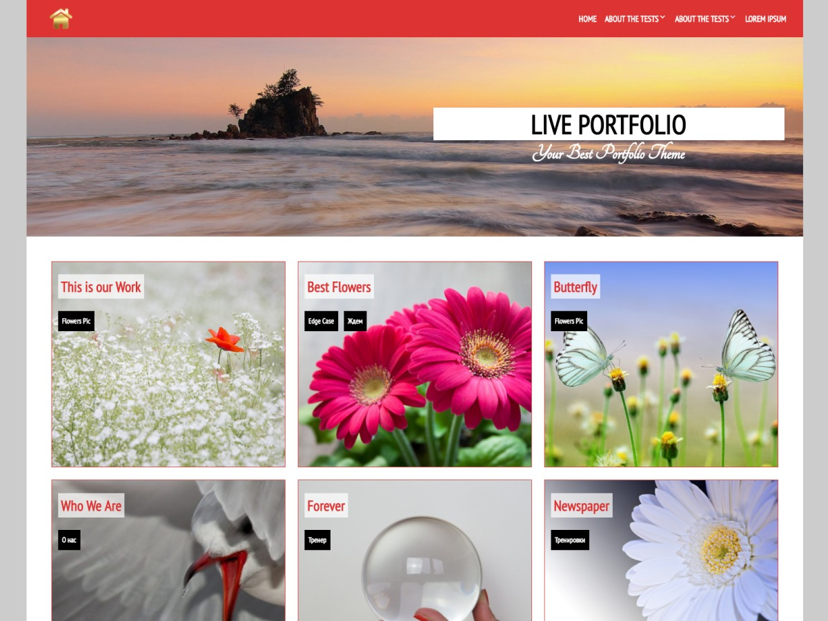 Live Portfolio free WordPress theme