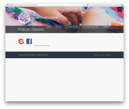 WordPress theme Wave - tubridstudios.ie