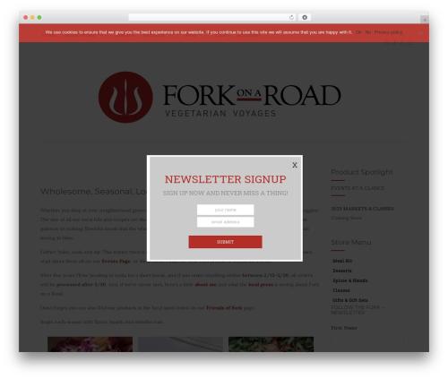 WordPress theme Activello - forkonaroad.com