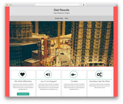 arora WordPress template - usabolos.com