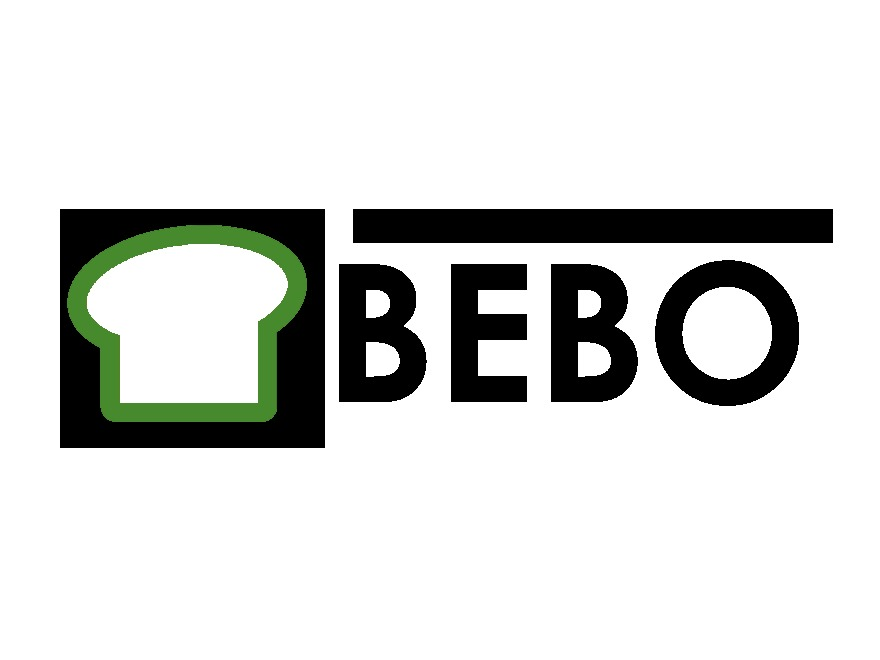 BEBO theme WordPress