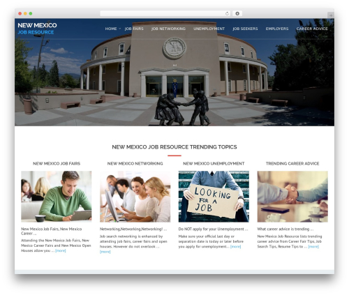WordPress theme Avion - newmexicojobresource.com