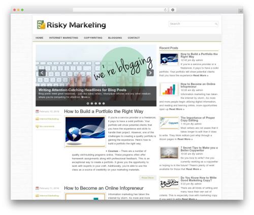 FinanceBlog personal blog WordPress theme - riskymarketing.com