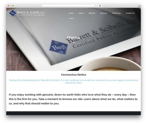 HotStar WordPress template for business - barrettandscibelli.com