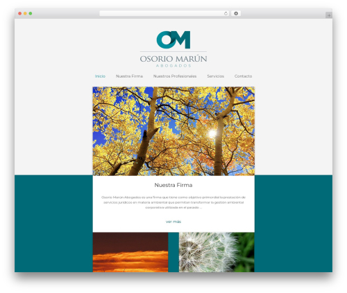 Bizly best WordPress template - omlegal.com