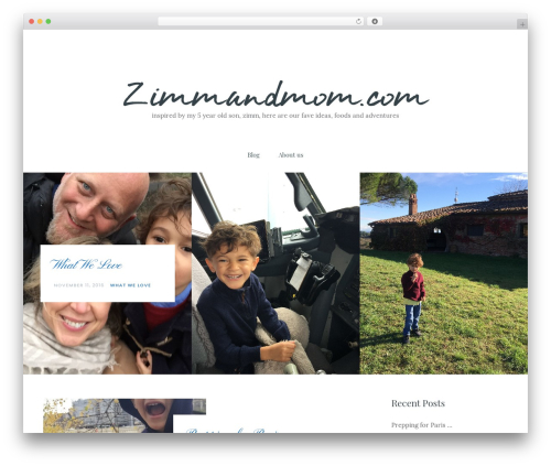Carbis WordPress theme - zimmandmom.com
