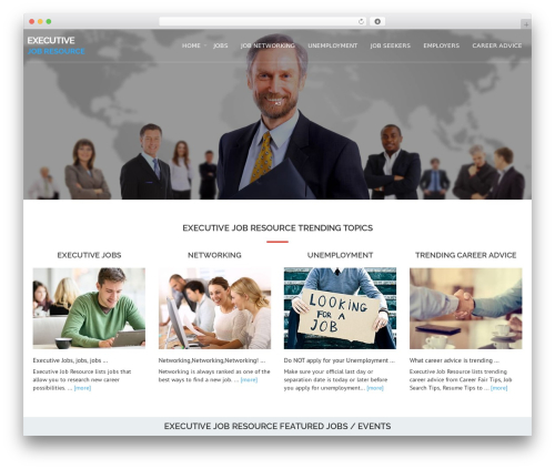 WordPress theme Avion - executivejobresource.com