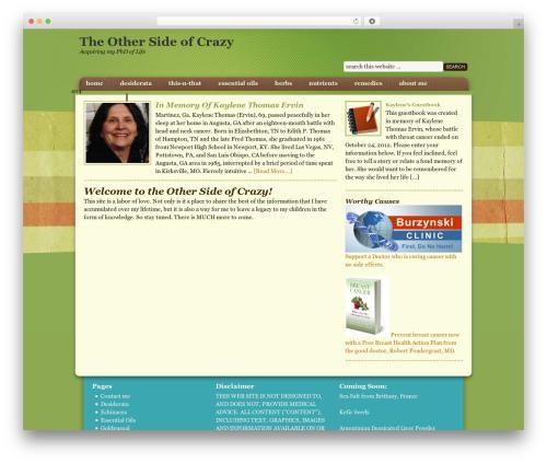 WordPress template Going Green Child Theme - theothersideofcrazy.com