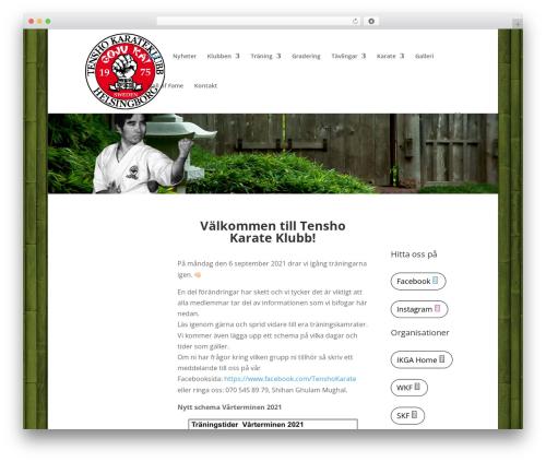 Divi best WordPress template - tenshokarate.com