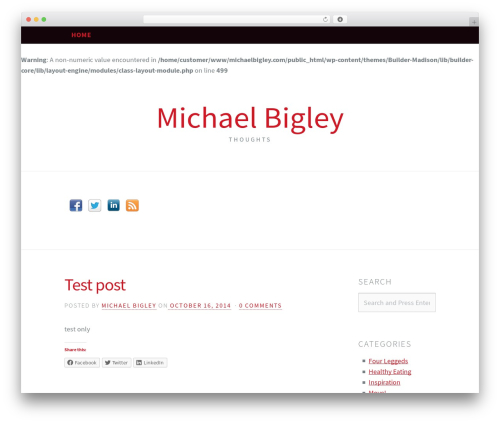 Madison theme WordPress - thebigleys.com