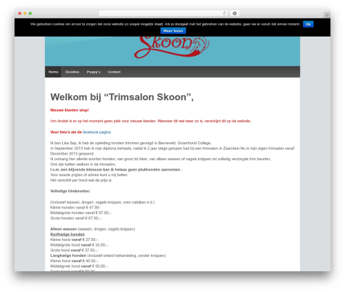 Responsive theme WordPress - trimsalonskoon.nl