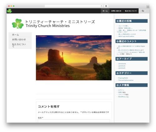 SmartAdapt free WP theme - trinity-ch.com