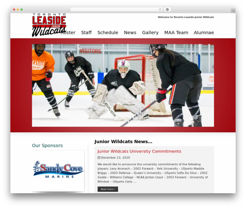 Striking MultiFlex & Ecommerce Responsive WordPress Theme theme WordPress - torontoleasidejrwildcats.ca