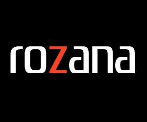 WordPress website template Rozana