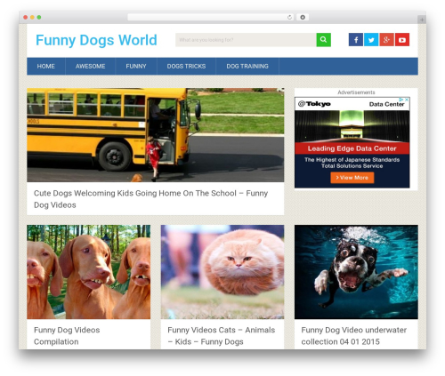 WordPress theme SociallyViral by MyThemeShop - funnydogsworld.com