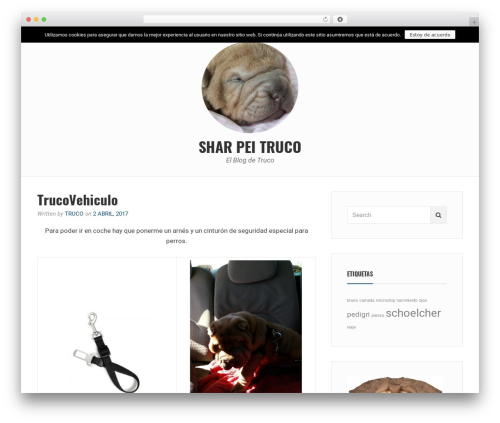 Best WordPress theme Avani - sharpeitruco.com