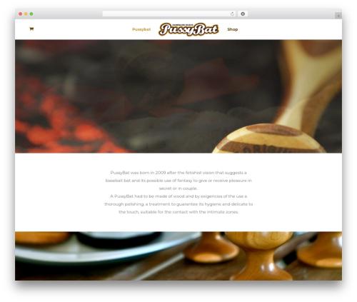 Divi template WordPress - pussybat.com