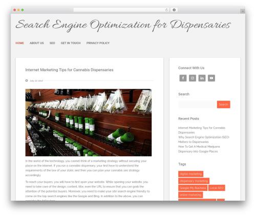 Polar Lite WordPress theme free download - stevepenley.com