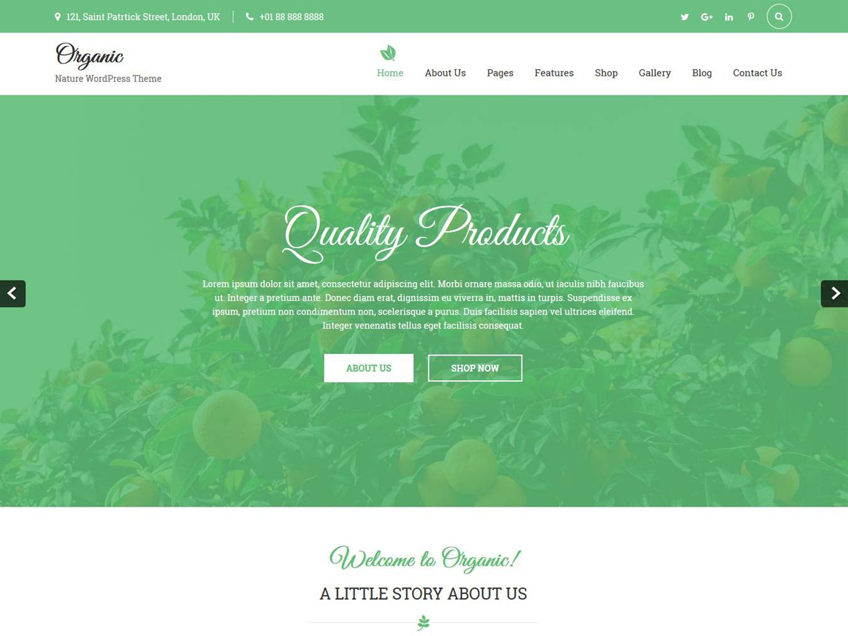 Organic Lite WordPress shop theme