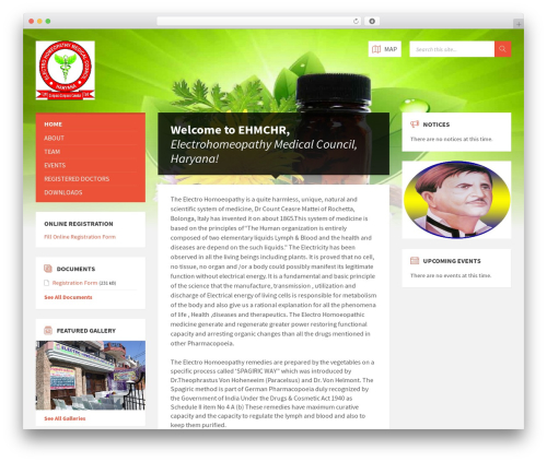 TownPress medical WordPress theme - ehmchr.com