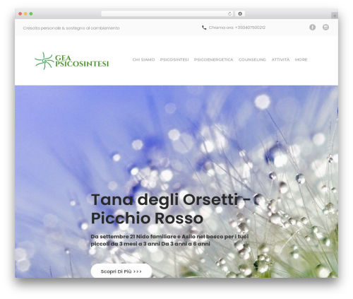 WordPress theme counselor - geapsicosintesi.it