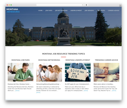 Avion best WordPress theme - montanajobresource.com
