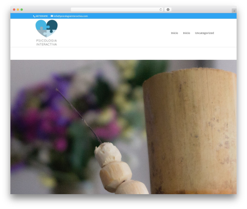 Divi best WordPress template - psicologiainteractiva.com