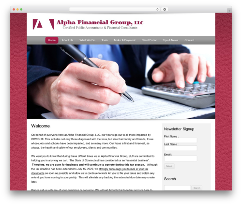 WP template Customized - alphafingroup.com