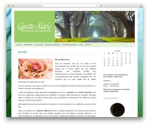 picolight best WordPress theme - ginettealarie.com