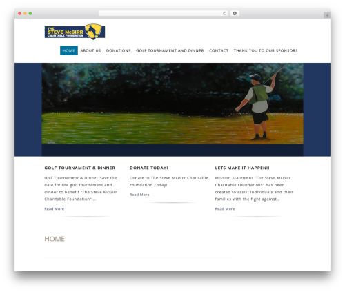 Litesite best WordPress theme - thestevemcgirrcharitablefoundation.org