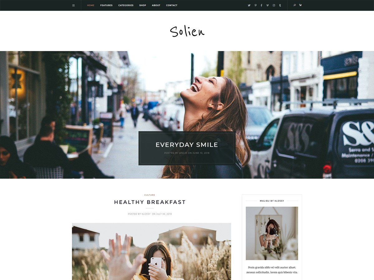 Solien WordPress blog theme