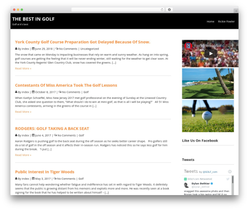 Terminal Lite WordPress template free - thebestingolfblog.com