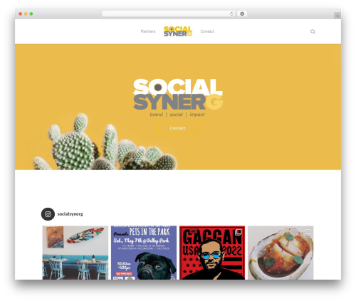 Salient WP theme - socialsynerg.com