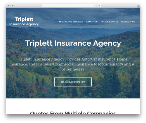 BrightFire Stellar WordPress template for business - triplettinsuranceagency.com