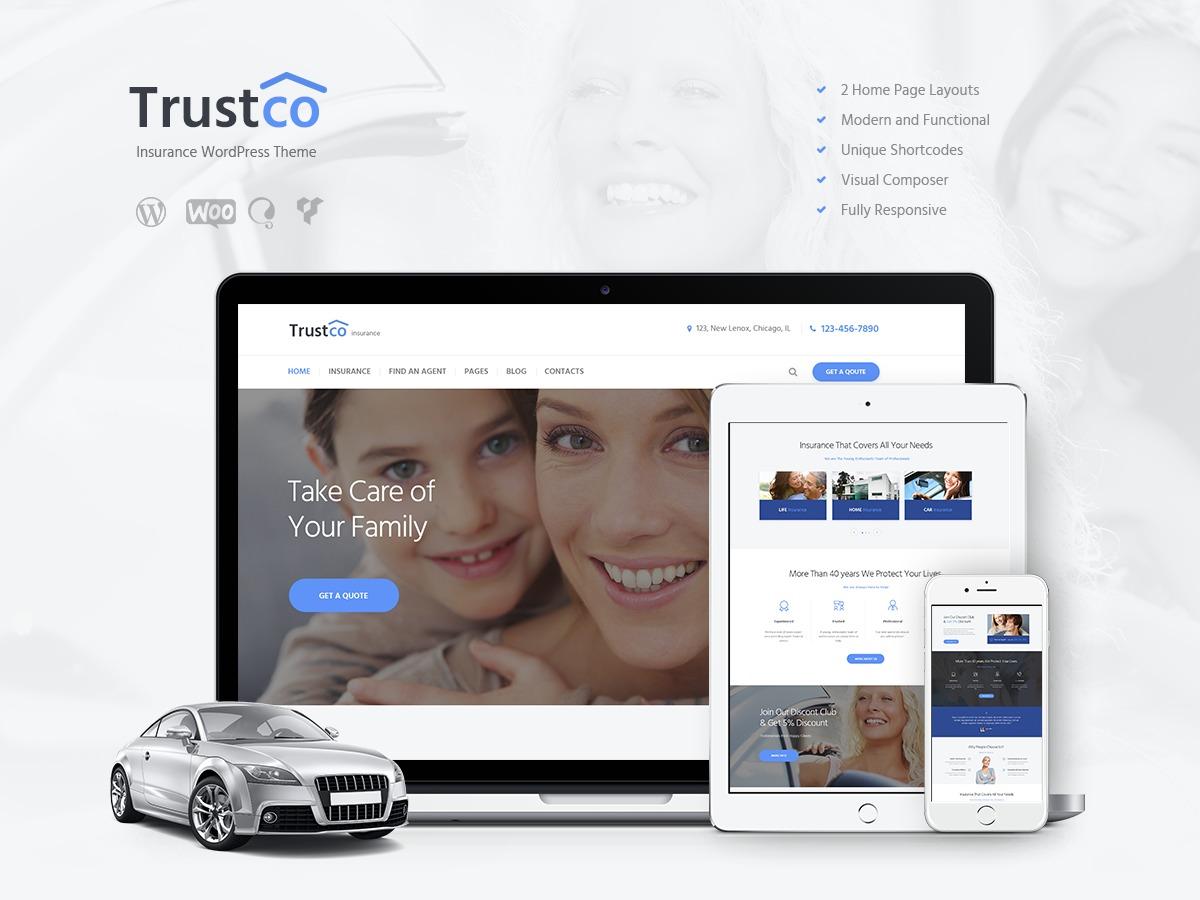 Theme WordPress Insurance-Ancora Child