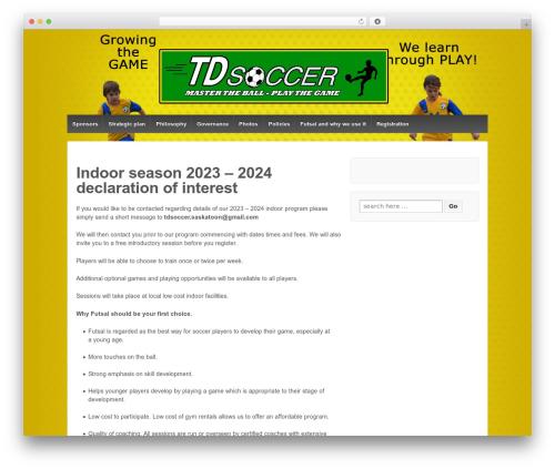WordPress theme Responsive - tdsoccer.com