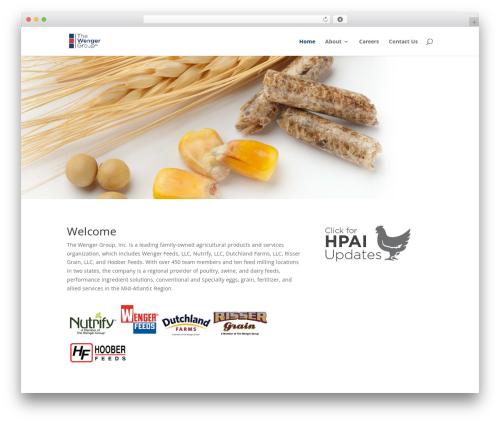 WP template Divi - thewengergroup.com