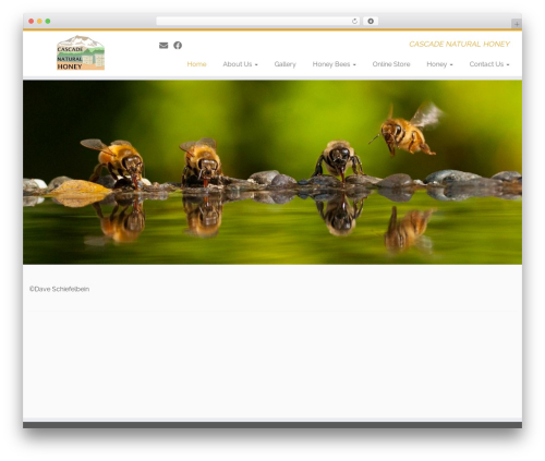 Customizr WordPress theme - cascadenaturalhoney.com