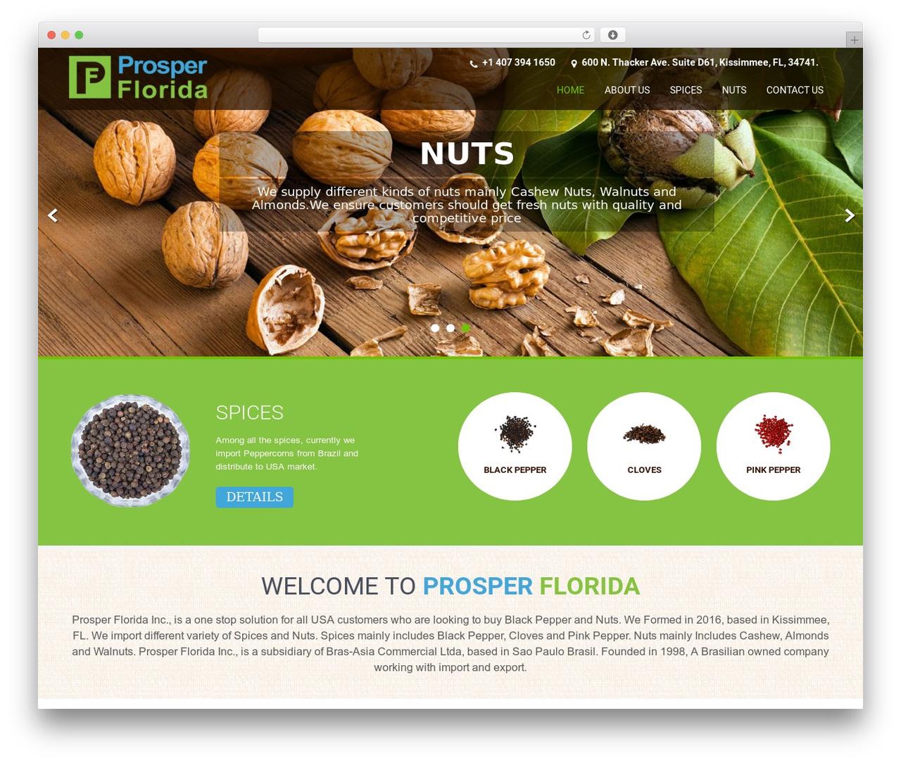 SKT Coffee WordPress template free - prosperflorida.com