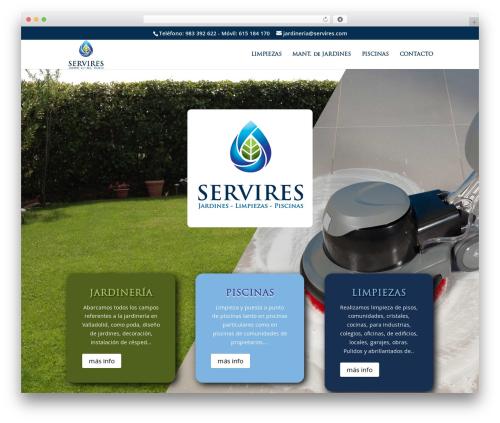 WP theme Divi - servires.com
