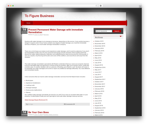 iDream WordPress theme - tofigurebusiness.com