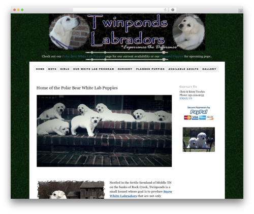 Thesis top WordPress theme - twinpondslabradors.com