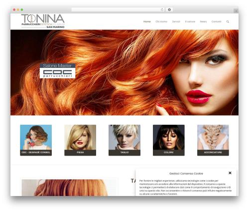WordPress theme Enfold - toninastaff.com