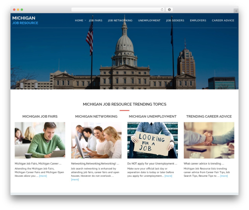 WordPress website template Avion - michiganjobresource.com