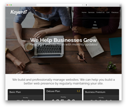 Pinnacle best WordPress theme - kayardi.com