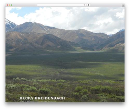 Twenty Seventeen best free WordPress theme - beckybreidenbach.com