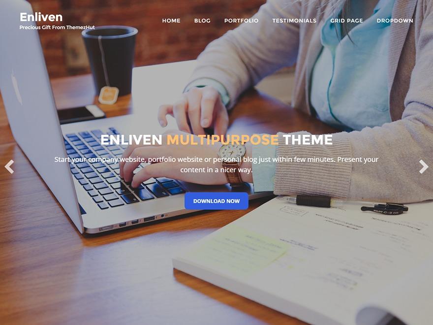 Enliven theme WordPress portfolio