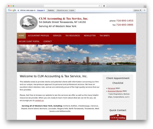 Customized premium WordPress theme - clmtax.com